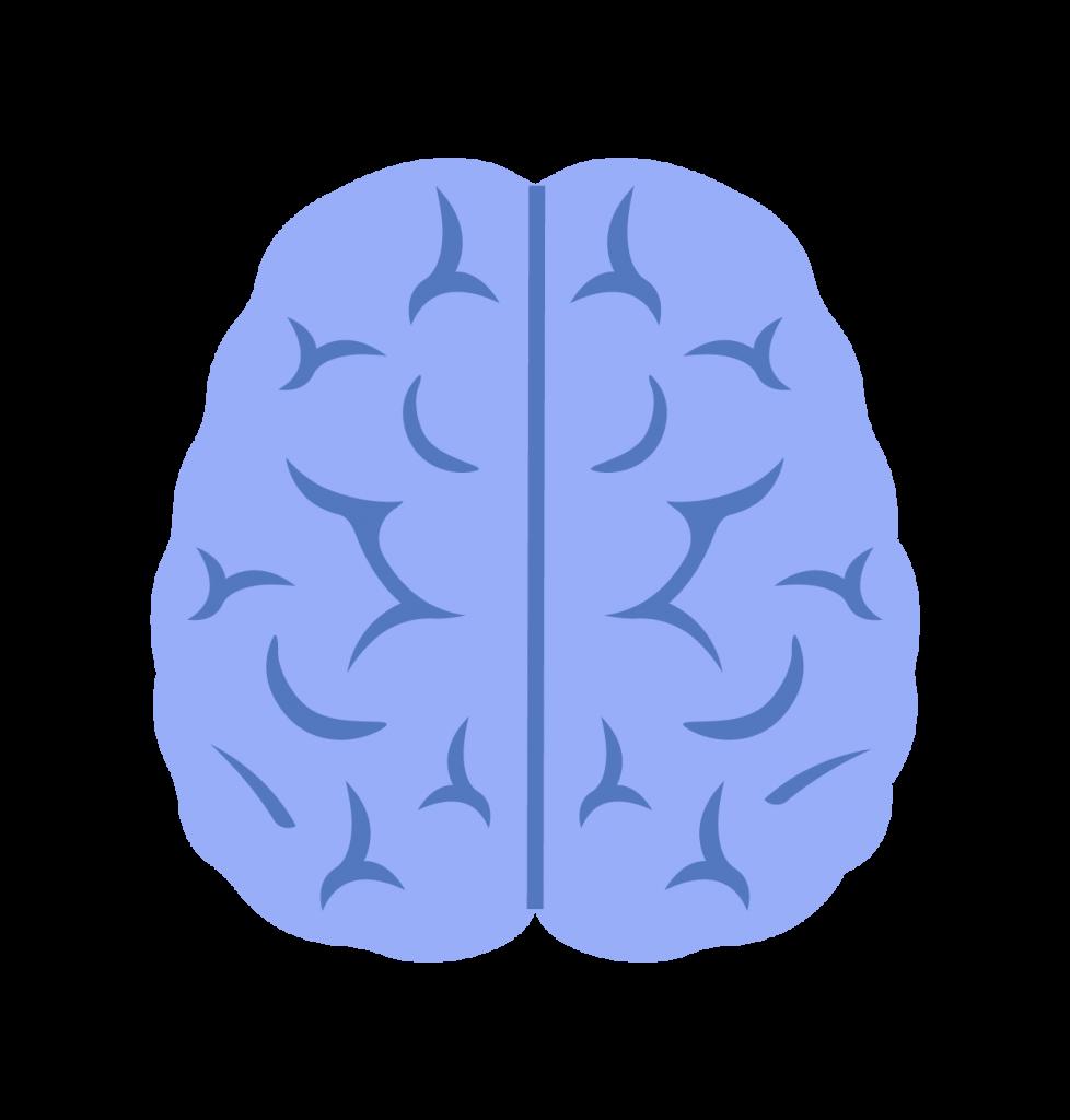 picto cerveau