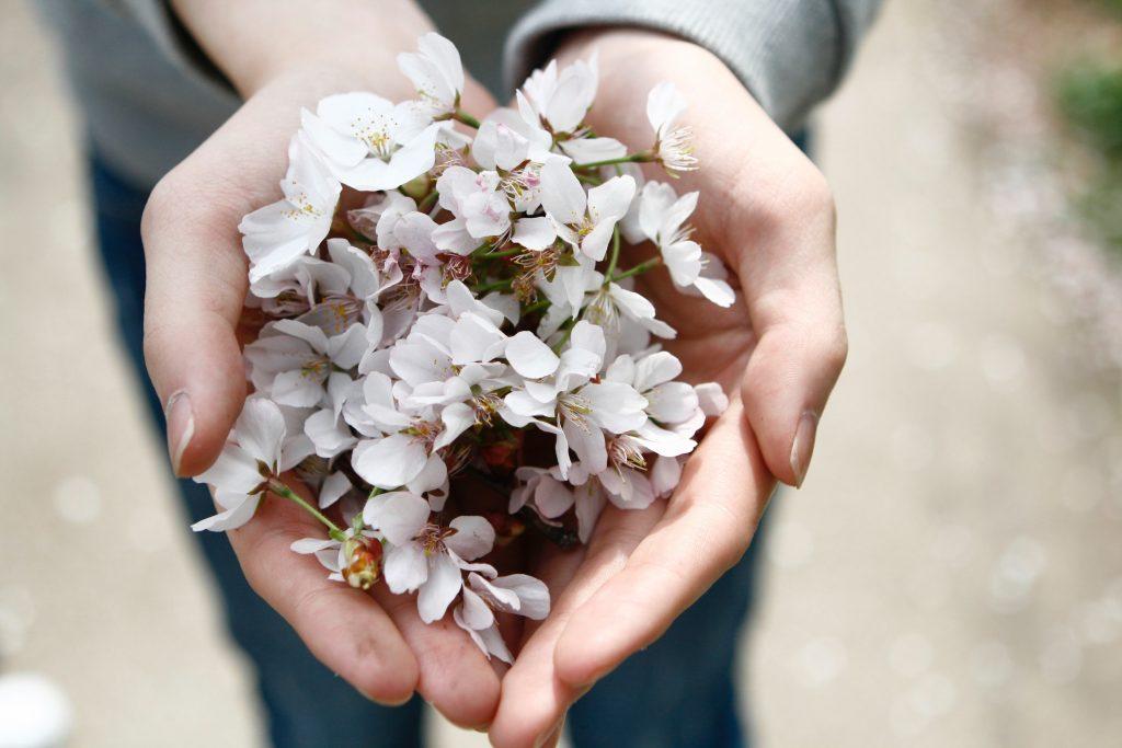 mains-ouvertes-petales-fleures