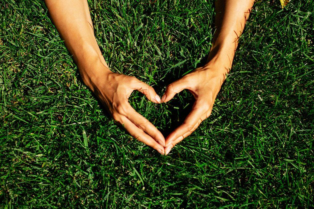 Petit précis d'écologie intérieure Chapitre 1 :Prenons soin de notre Terre : Ancrage et Sécurité
