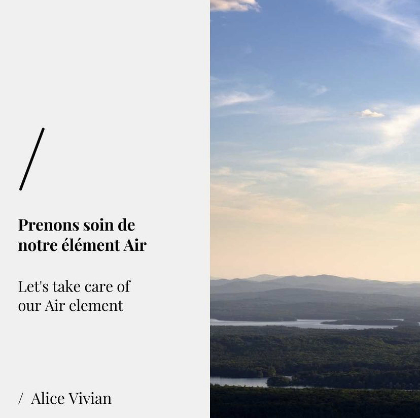 Petit précis d'écologie intérieure – Chapitre 4 : Prenons soin de notre élément Air, liberté